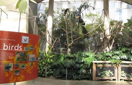 The Center houses more than 100 birds from around the world.